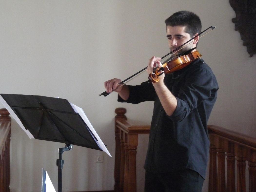 Violinistas - André Cruz