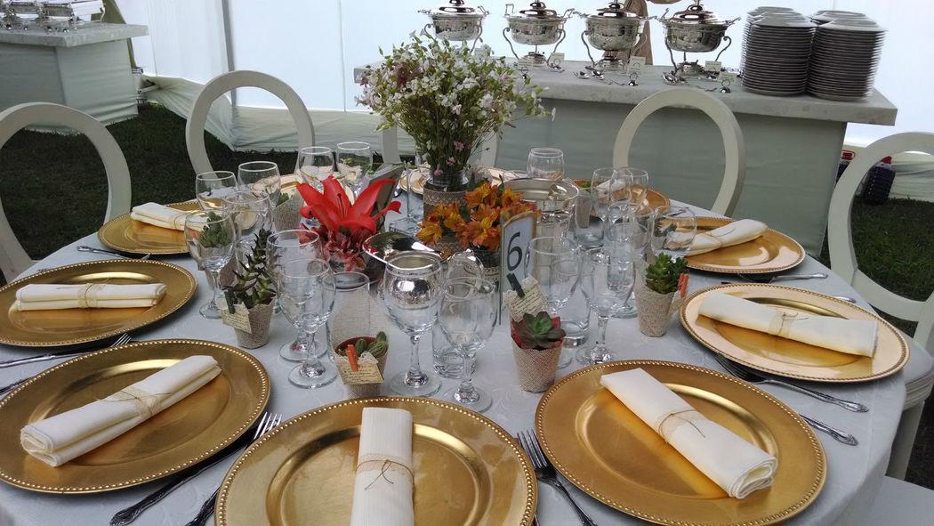 Plantas Suculentas decoradas con yute y blonda, como complemento a la decoración de la mesa de invitados. Recuerdo de boda, shower.