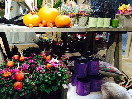 Beispiel: Impressionen aus dem Ladengeschäft, Foto: Florale Welten.