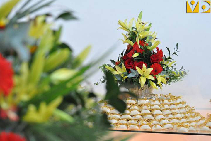Vivo Desejo - Decoração de Festas e Eventos