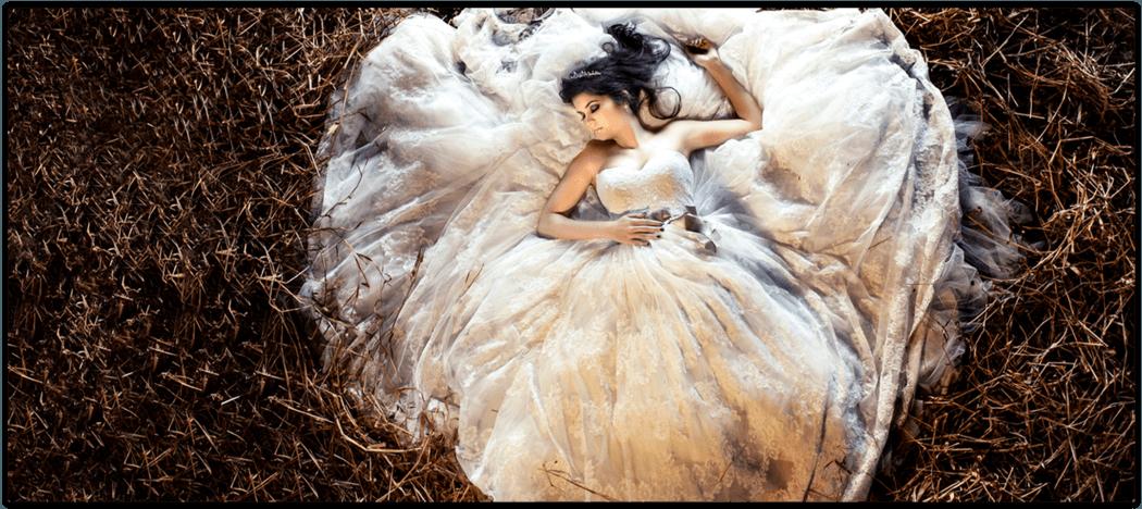 Ana Paula Guerra Fotografias