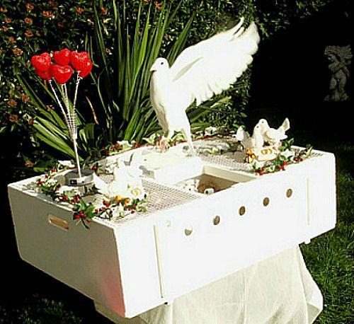 Beispiel: Hochzeitstauben -  Korb, Foto: Hochzeitstaubenservice Christian Wilhelm.