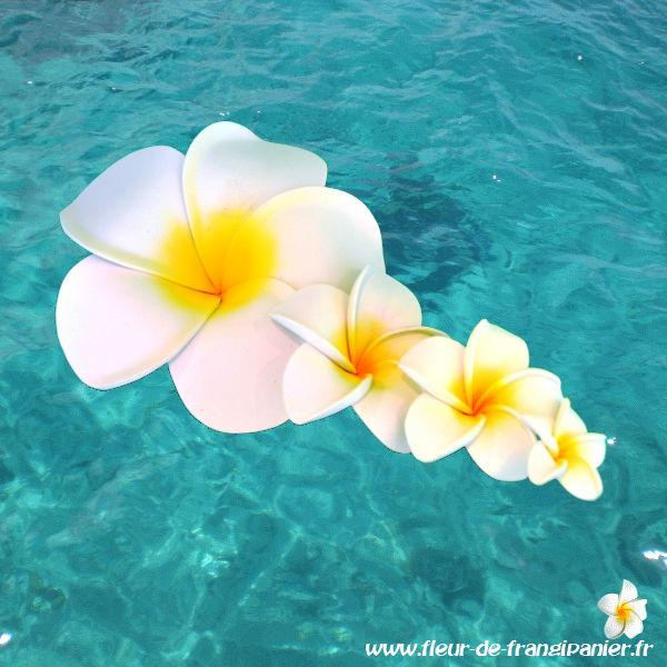 Fleur de frangipanier pour la décoration (mariages, vitrine, espace bien-être...) Disponibles en 4, 6, 8, 11 et 13 cm de diamètres. 8 coloris disponibles.