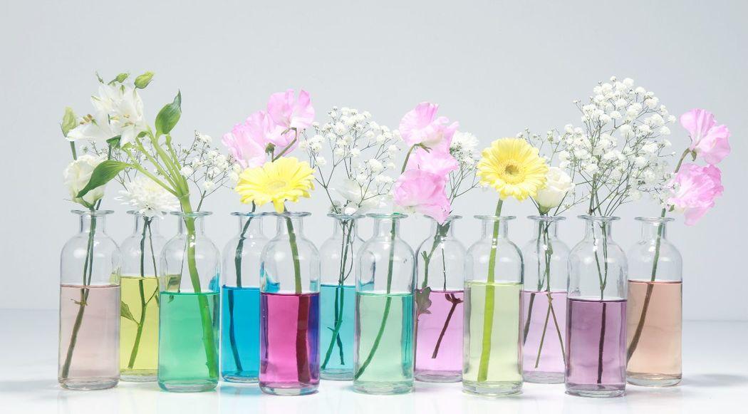 Vases et contenants