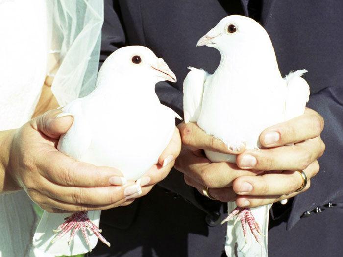 Beispiel: Umsetzung verschiedener Hochzeitsbräuche, Foto: Trau Atelier.