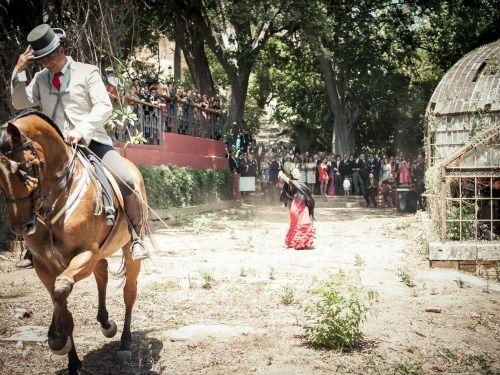 Espectáculo de flamenco y ecuestre. Valentinas