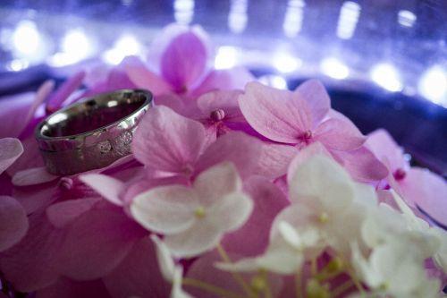 Ein Beispiel einer Detailaufnahme der Hochzeitsringe, Foto: Klaus Führer Photography