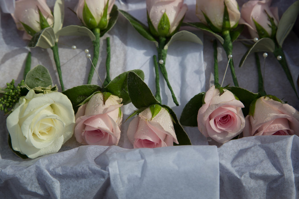 Buttonholes. Classic rose buttonholes for the men in the bridal party. Pink to compliment the bridesmaids and ivory for the groom