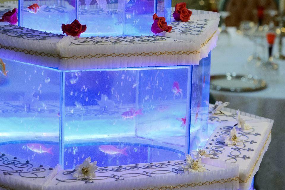 Magic Reef