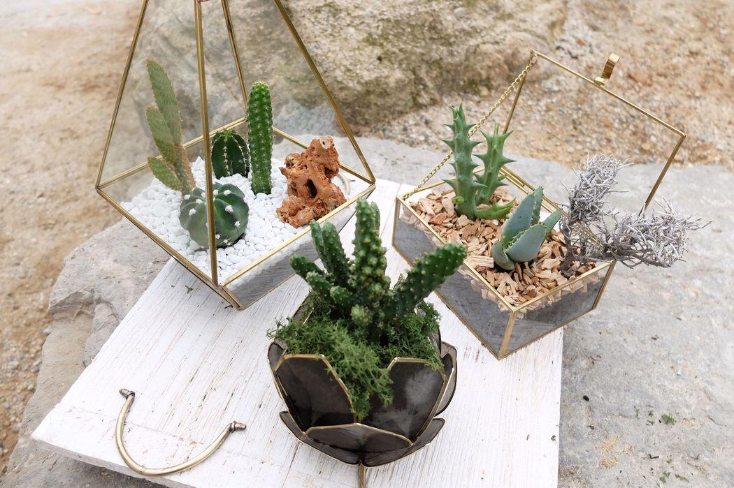 Centros de mesa Flowercap