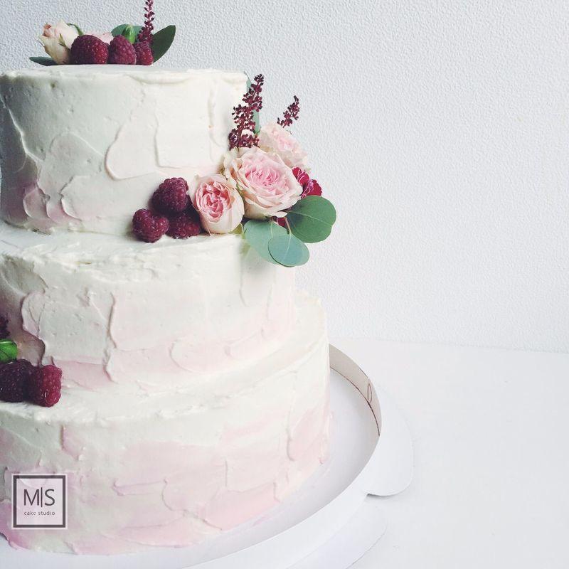 M S cake studio    tender