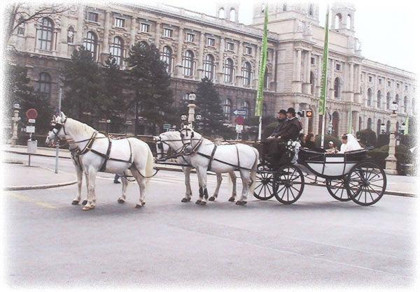 Beispiel: Mit der Hochzeitskutsche durch Wien, Foto: Fiaker Wien.