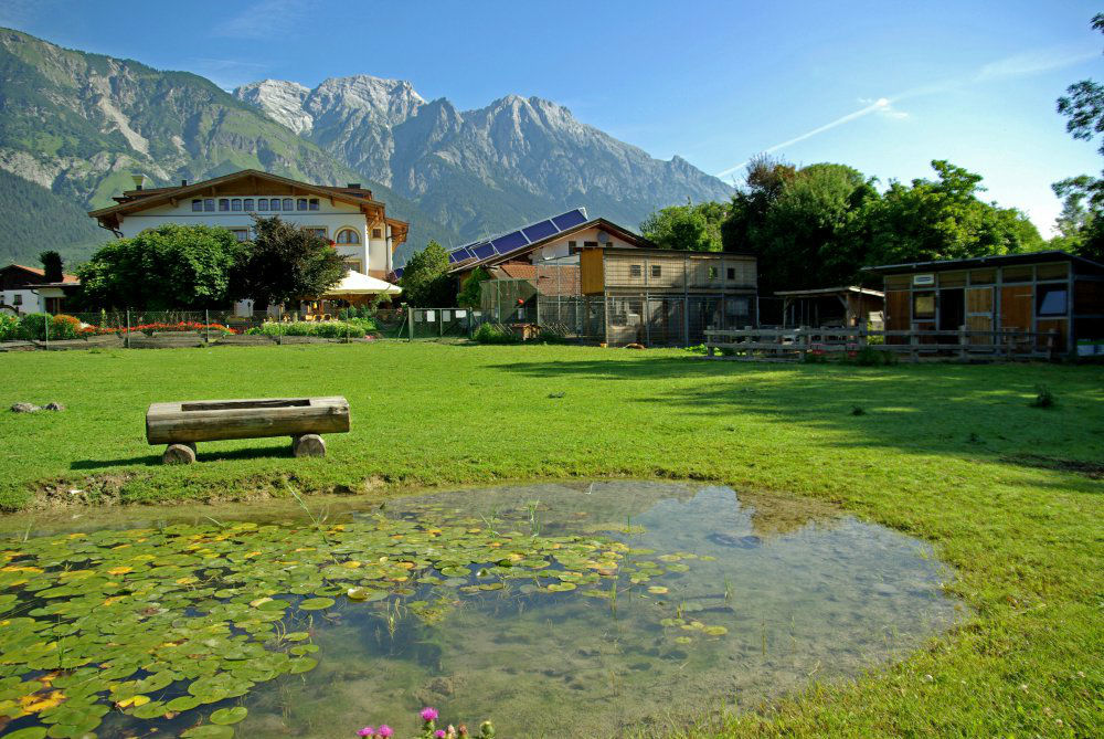 Beispiel: Außenbereich, Foto: Garten Hotel Maria Theresia.