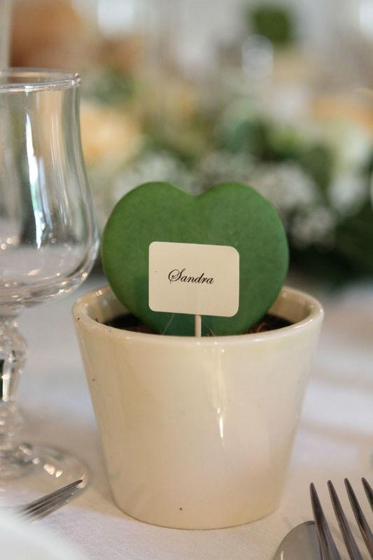 marque place succulente mariage