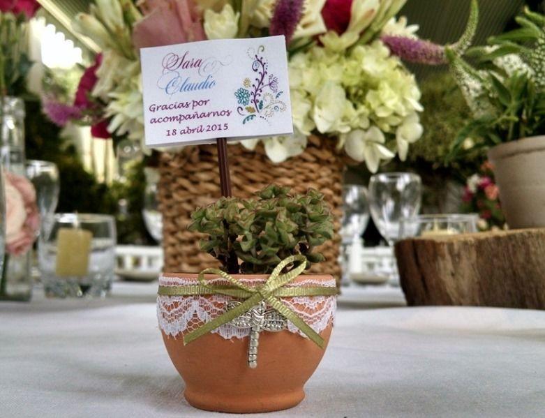 Recuerdo de bodas con suculentas decoradas con blondas, cinta verde y aplique de metal.
