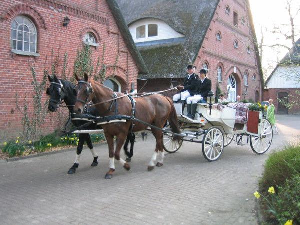 Beispiel: Hochzeitskutsche, Foto: Gut Schöneworth.