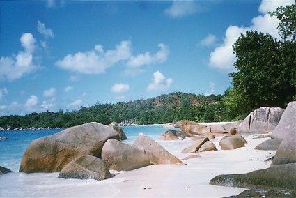 Nuove Ali - Seychelles