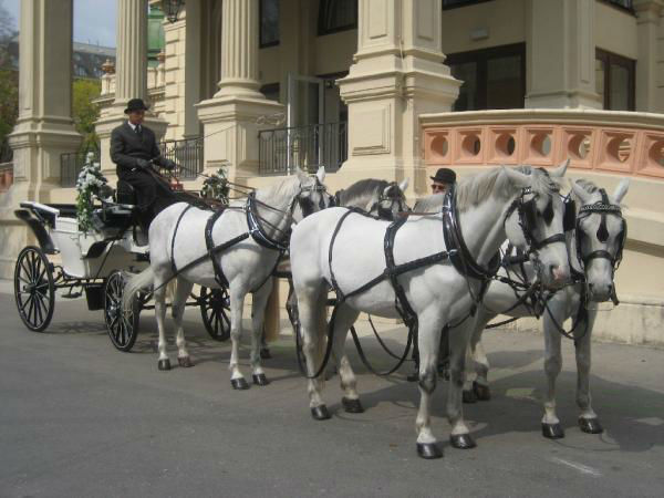 Beispiel: Fahren Sie mit einer Kutsche vor, Foto: Kursalon Wien.