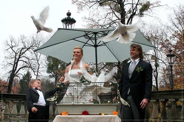 Beispiel: Hochzeitstauben - das Symbol der Liebe, Foto: Hochzeitstauben Dresden®.