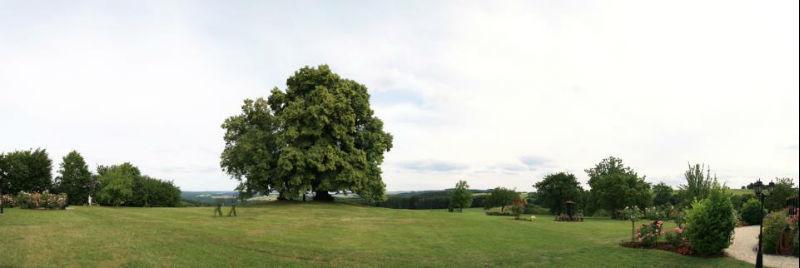Beispiel: Garten des Gutes, Foto: Hofgut Bergerhof.
