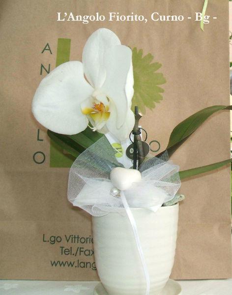 L'Angolo Fiorito, Curno (Bg): bomboniera floreale #Fiorista #matrimonio #Bergamo