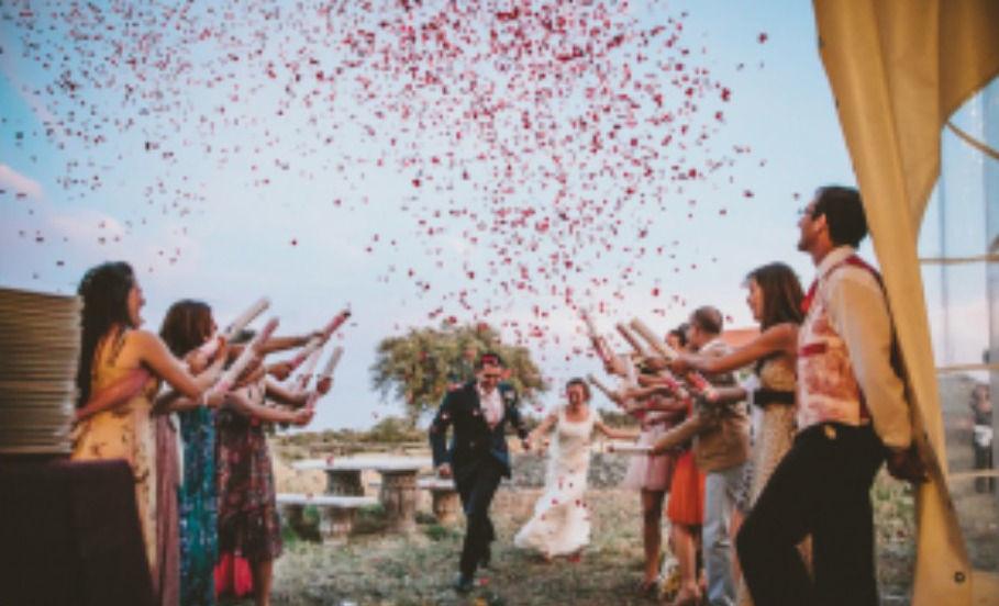 Nupzium Wedding Planners