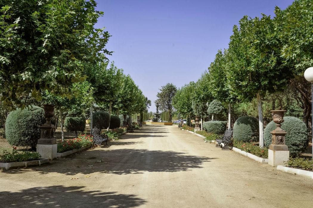 Entrada Finca El Albero
