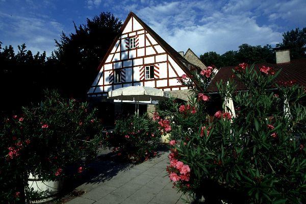 Beispiel: Terrasse, Foto: Schloss Heinsheim.