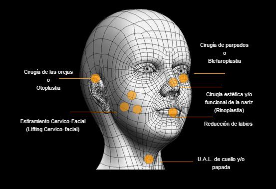 Especialidades en cirugía facial