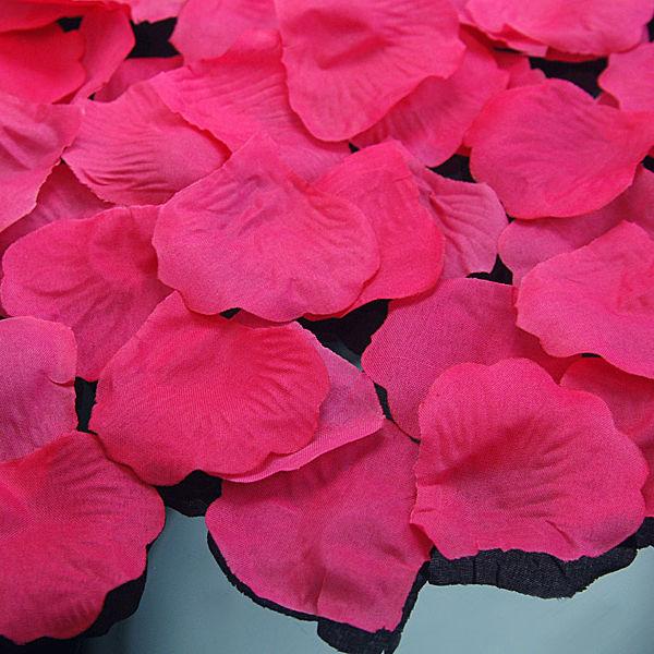 Beispiel: Rosenblätter - pink, Foto: Feiermeier Nürnberg.