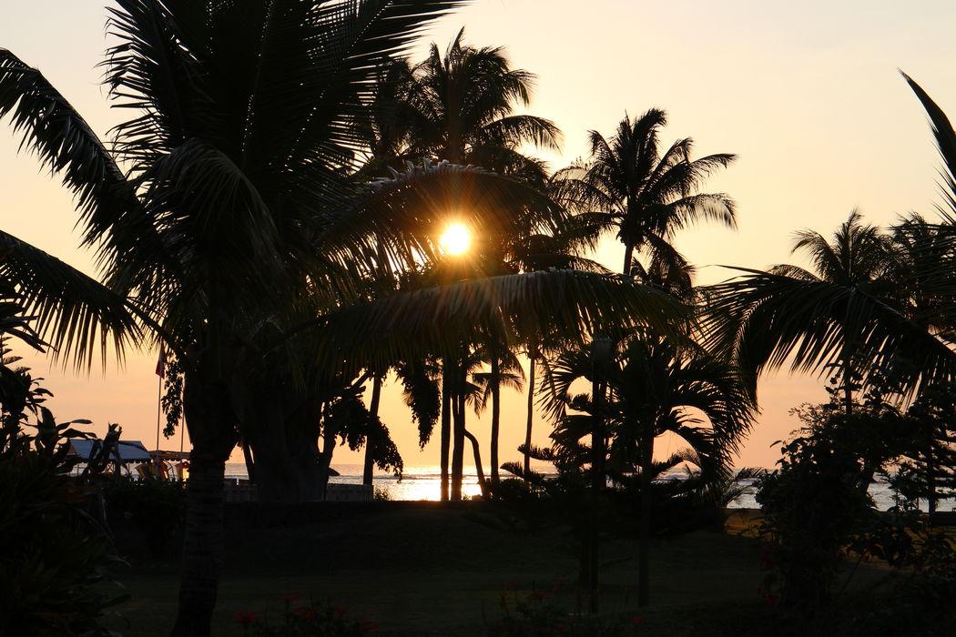 """Hochzeit in der perfekten Szenerie, Sonnenschein, Palmen, Entspannung und Flitterwochen.  Mit meiner BRIDE INSIDER BOX MAURITIUS müssen Sie nur noch """"JA"""" sagen.  BERATUNG  Wir heiraten im Ausland und jetzt? Da ich selbst auf Mauritius geheiratet habe, weiß ich genau was zu tun ist. Ich wäre überglücklich Ihre Hochzeitsplanerin für Wien zu sein, um Ihre Fragen zu beantworten und Hinternissen auszuweichen. Holen Sie sich Ihr unverbindlichen Angebot oder vereinbaren Sie ein Beratungsgespräch per Email, office@bride-inside.com, per Handy +43(0) 660 562 6510 oder mit dem Kontaktformular. Your Wedding Planner BRIDE INSIDE Fotograf: Beatrice Dürr"""