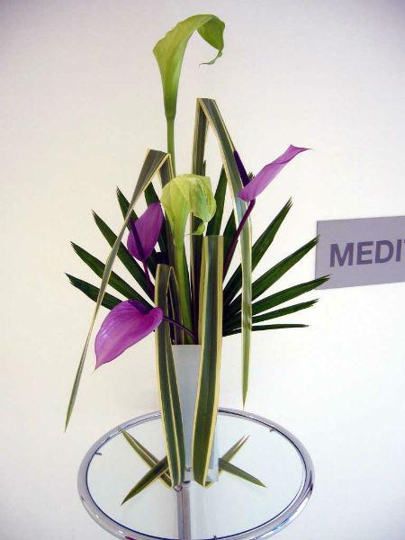 Herbs diseños florales