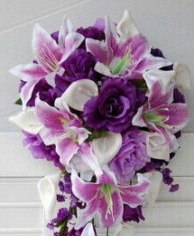 Solo púrpura