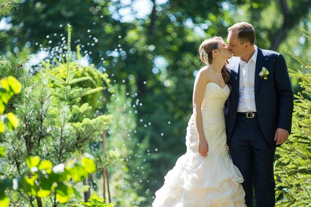 HoneyMood - Свадебное бюро