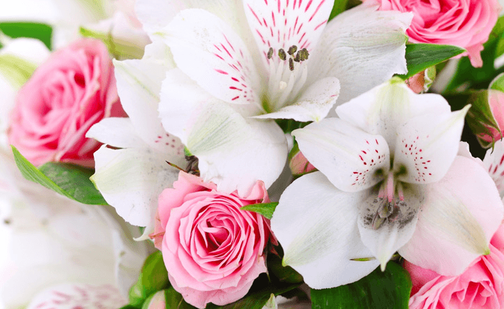 Flores para cualquier celebración