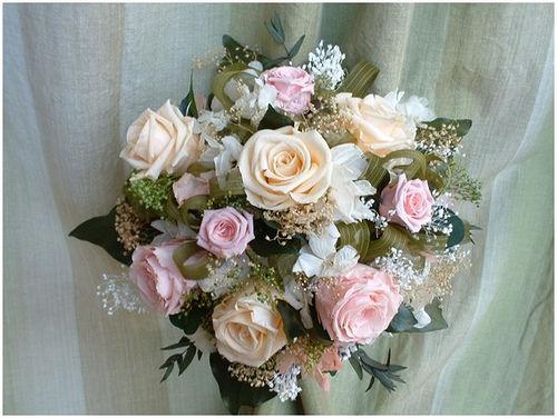 Rosas de color rosa y melocotón
