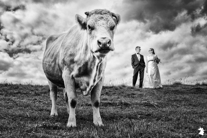 Beispiel: Kreative Hochzeitsfotografie, Foto: Alexander Hahn Emotional Photography.