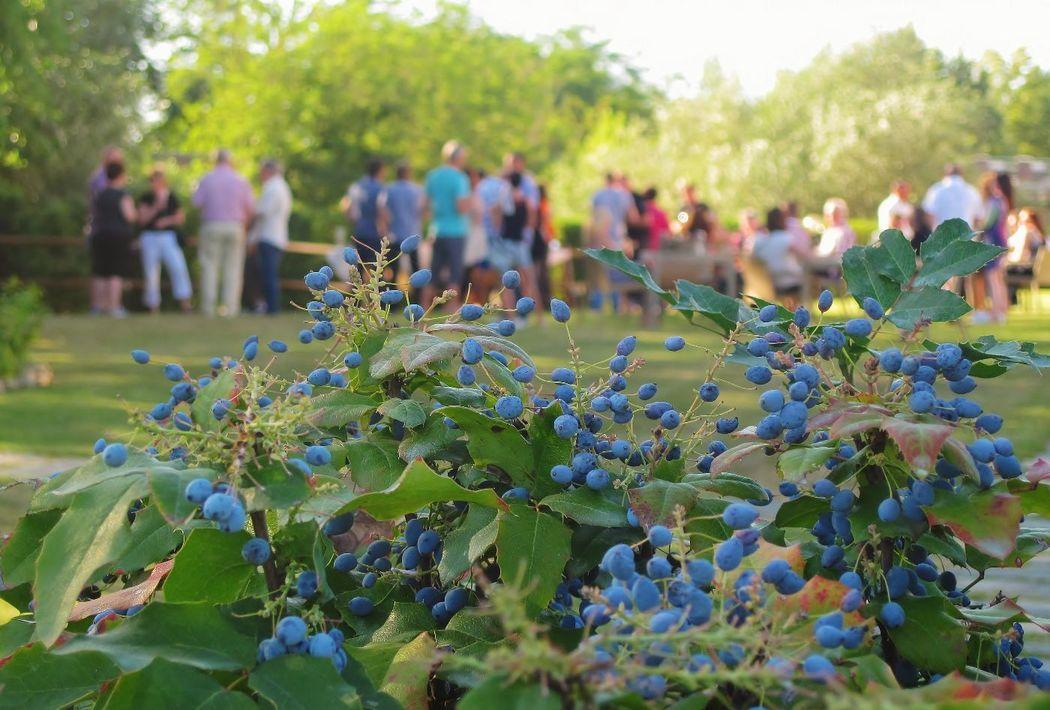 Easy summer party nel giardino dell'Hotel Certaldo (Toscana)
