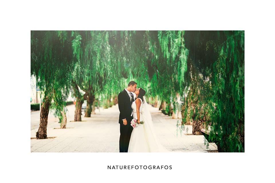 Nature Fotógrafos