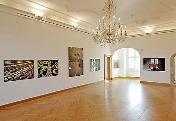 Beispiel: Herrschaftssaal, Foto: Schloss Agathenburg.