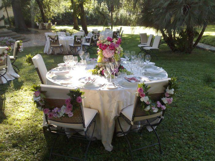 Gardenia Fiori e Piante