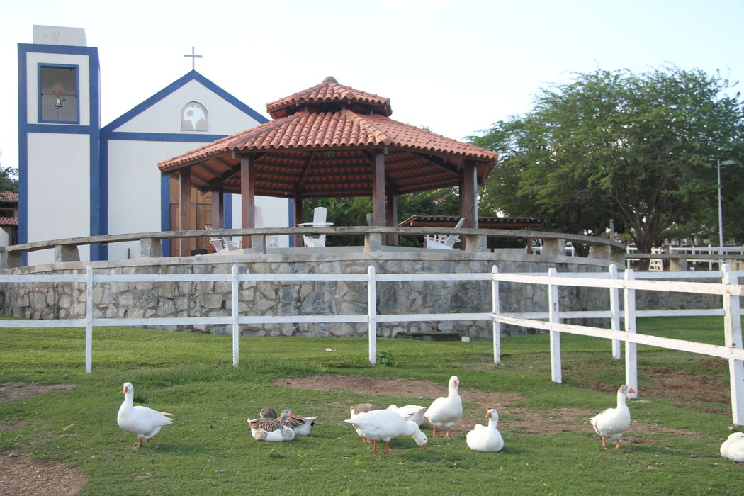 Hotel Fazenda Portal de Gravatá
