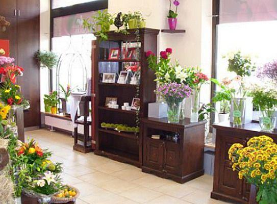 Beispiel: Ladenimpressionen, Foto: Blumenparadies Hahn.