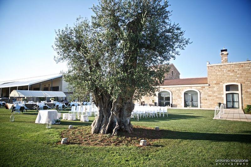 esterno prato Ugo Martino