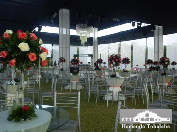 Arak Club Libanés