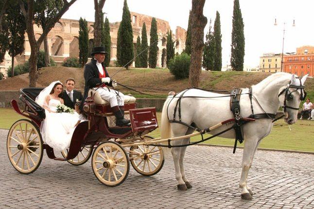 Fiani Autonoleggio: carrozza con cavalli