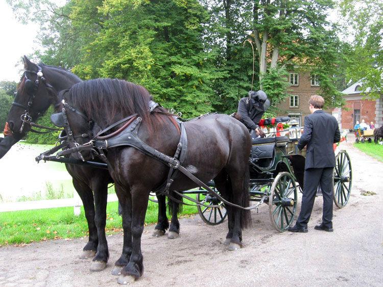 Beispiel: Ihre Kutsche mit Kutscher, Foto: Hochzeitskutschen-Mieten.de.