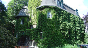 Beispiel: Rückansicht, Foto: Villa Blumenfisch.