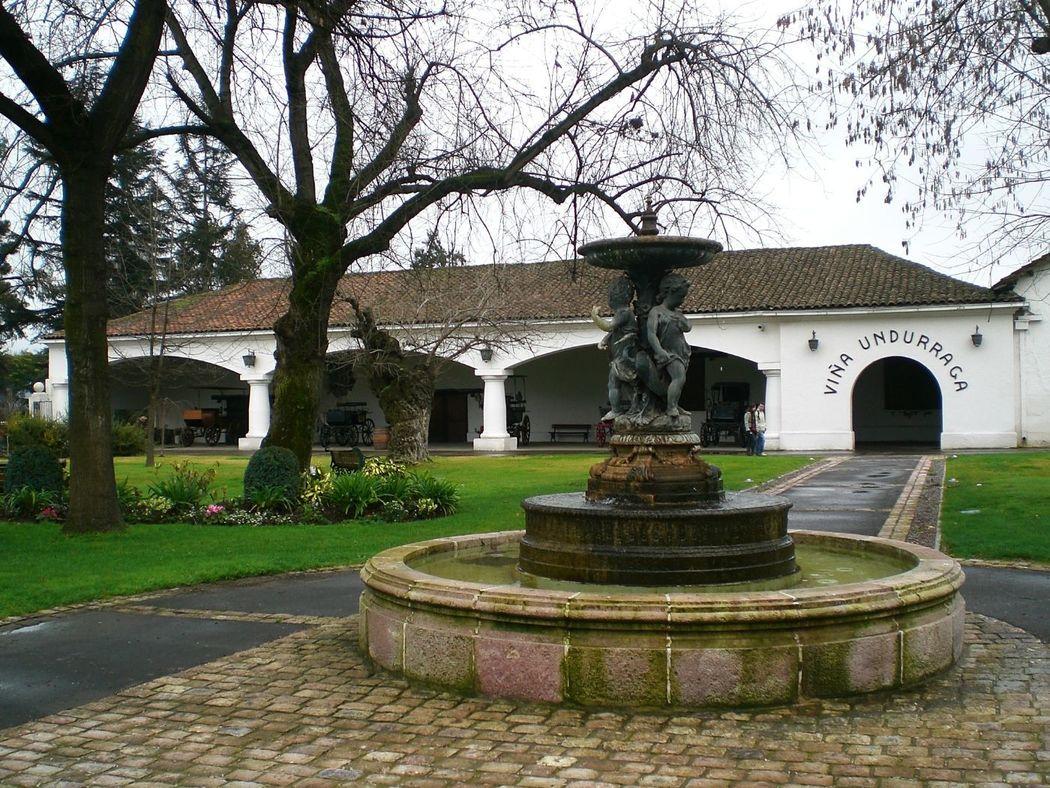 Vista de la entrada de la vinícola