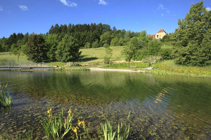 Beispiel: Schwimmteich, Foto: Schlosshotel Obermayerhofen.